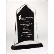 NEW Apex Series Glass Award